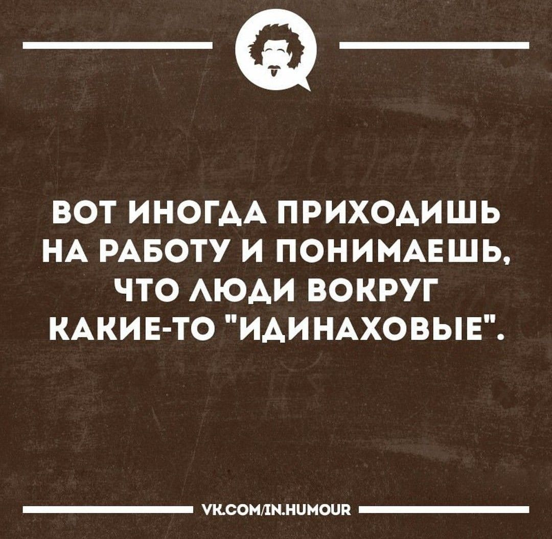 юмор афоризмы фото мост народное