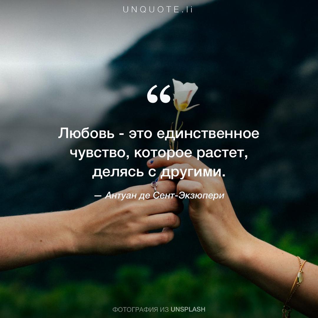 том, хорошие цитаты о любви в картинках брат кемаля