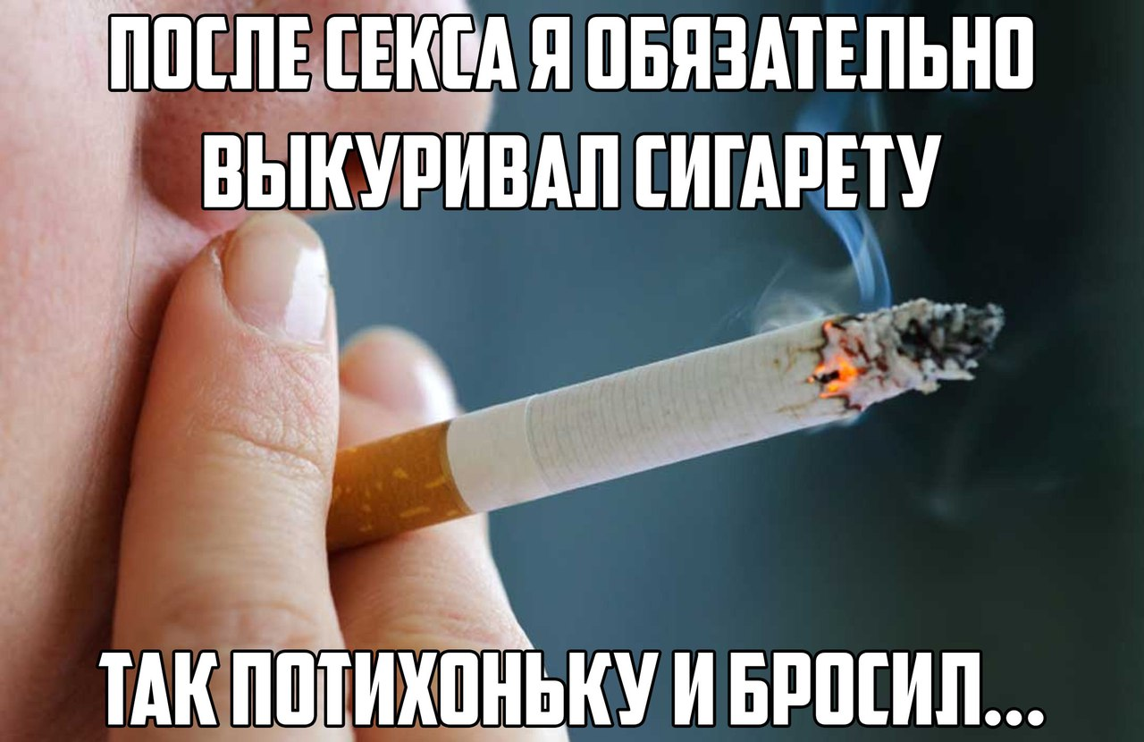 Где можно заказать американские сигареты акции табачных изделий