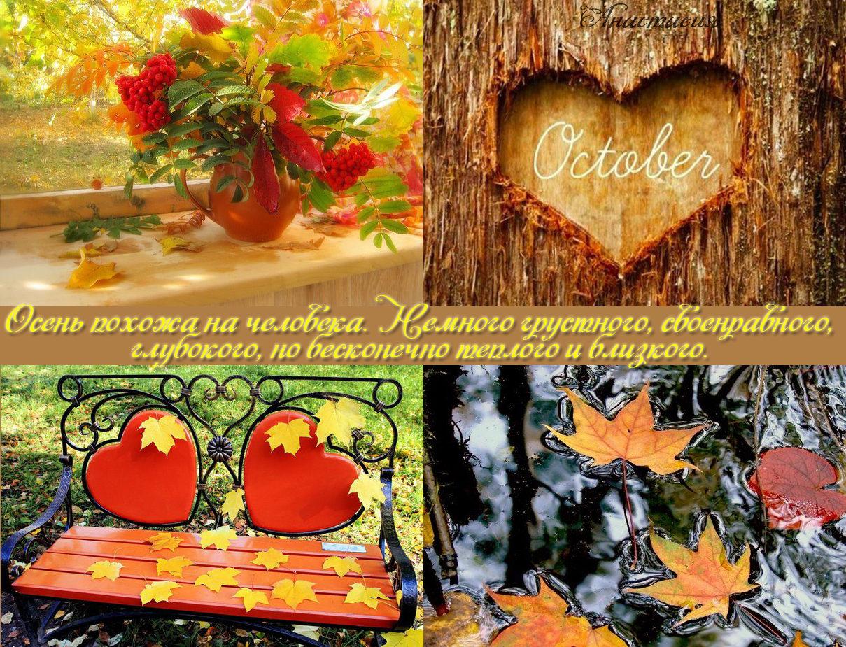 хороша цитаты про осень в картинках для дженсон