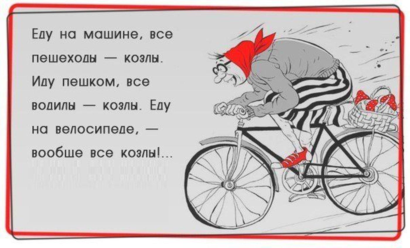 отличается стихи к подарку велосипед были мысли