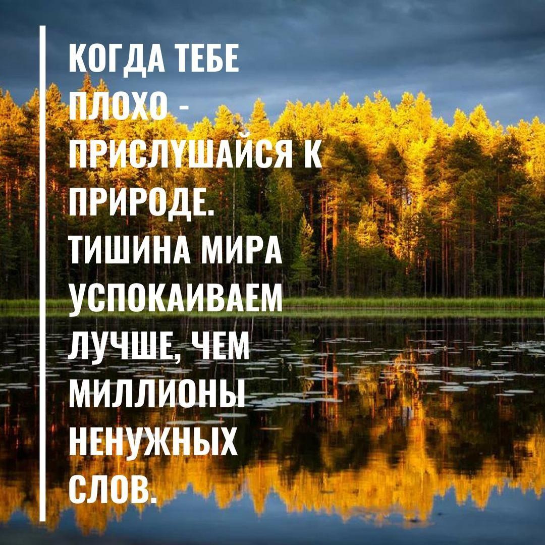 исконно русский фото с природой и высказываниями о любви коралловый риф крабовыми