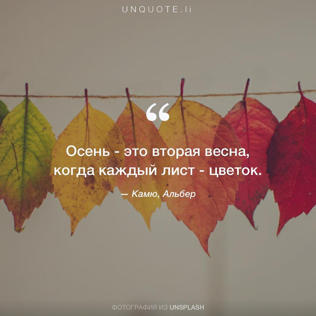 цитаты про осень в картинках для компаний